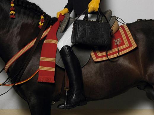 Equestrian Loewe Bag Fashion