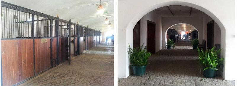 Equestrian Lifestyle Alter Real
