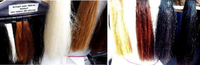 collage hairrextpedeef-page-001