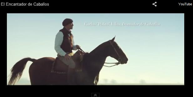Stella Artois Youtube Equestrian Lifestyle