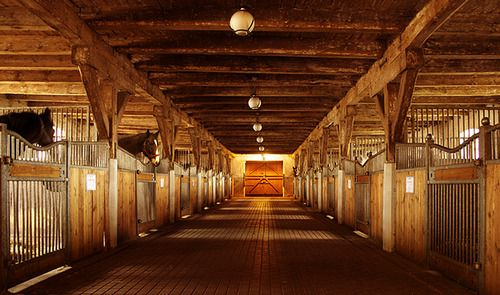 Equestrian Lifestyle Dream Stable