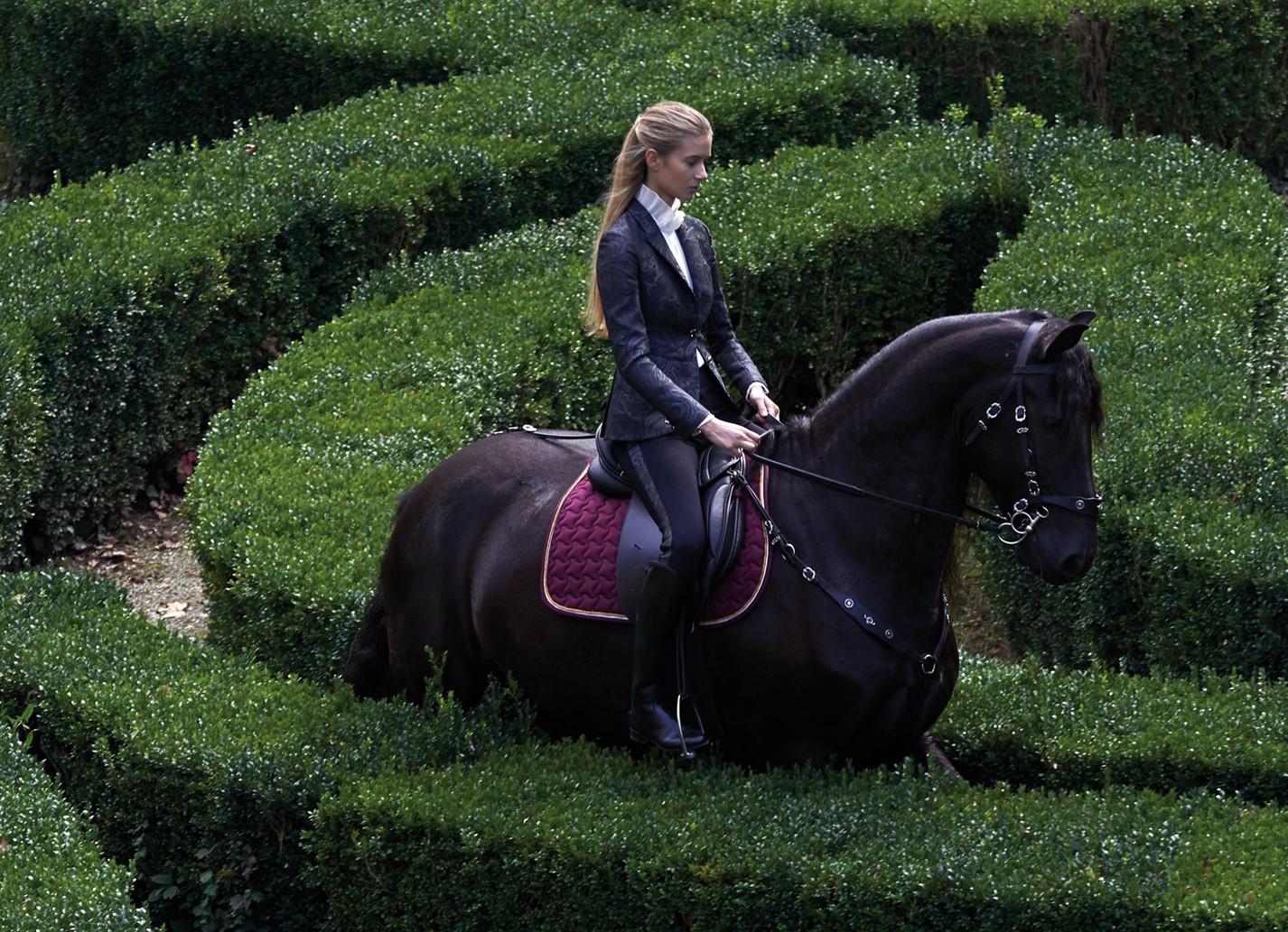 Equestrian Lifesyle Miasuki